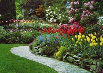 Jardiner a f cil la importancia del clima antes de for Arbustos para patios