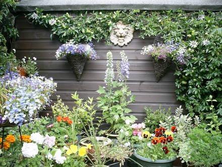 Algunas ideas para jardines pequeños-12