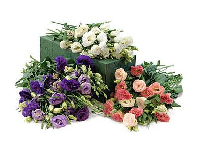 Lisianthus, una flor perfecta para decorar una boda