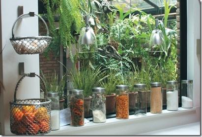 mantener-plantas-interior
