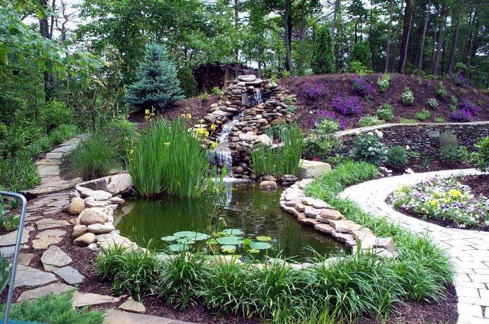 Jardiner a f cil tu jard n blog de jardiner a for Peces para fuente exterior