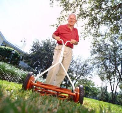 Labores de junio para el cuidado del jardin