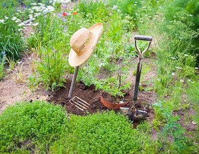 herramientas necesarias para el jardin
