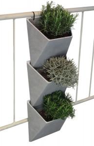 """""""Hierbas Aromáticas en el Balcón"""""""