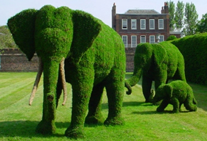 """""""Decora tu Jardín con Escultura de Árboles"""""""