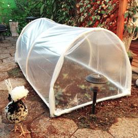 """""""Cómo Construir un Invernadero Fácil"""""""