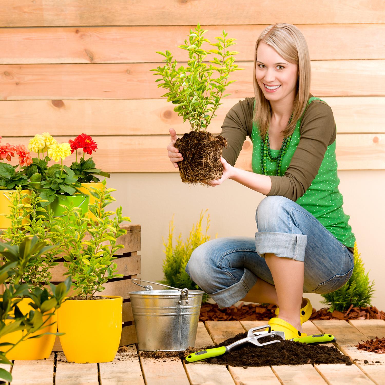 woman-gardening-terrace-flowers-plants