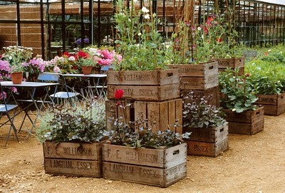 container-garden-wood-crate-garden-wood-crate-planter-garden-ideas-garden-garden-design-diy-crafts-via-pinterest
